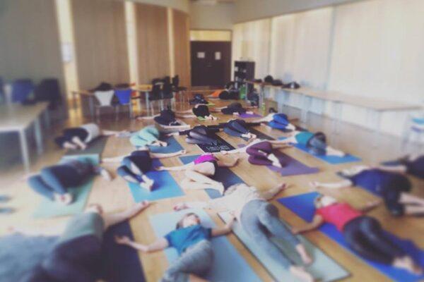 Yoga i virksomheder kan styrke medarbejderes koncentration og holdning